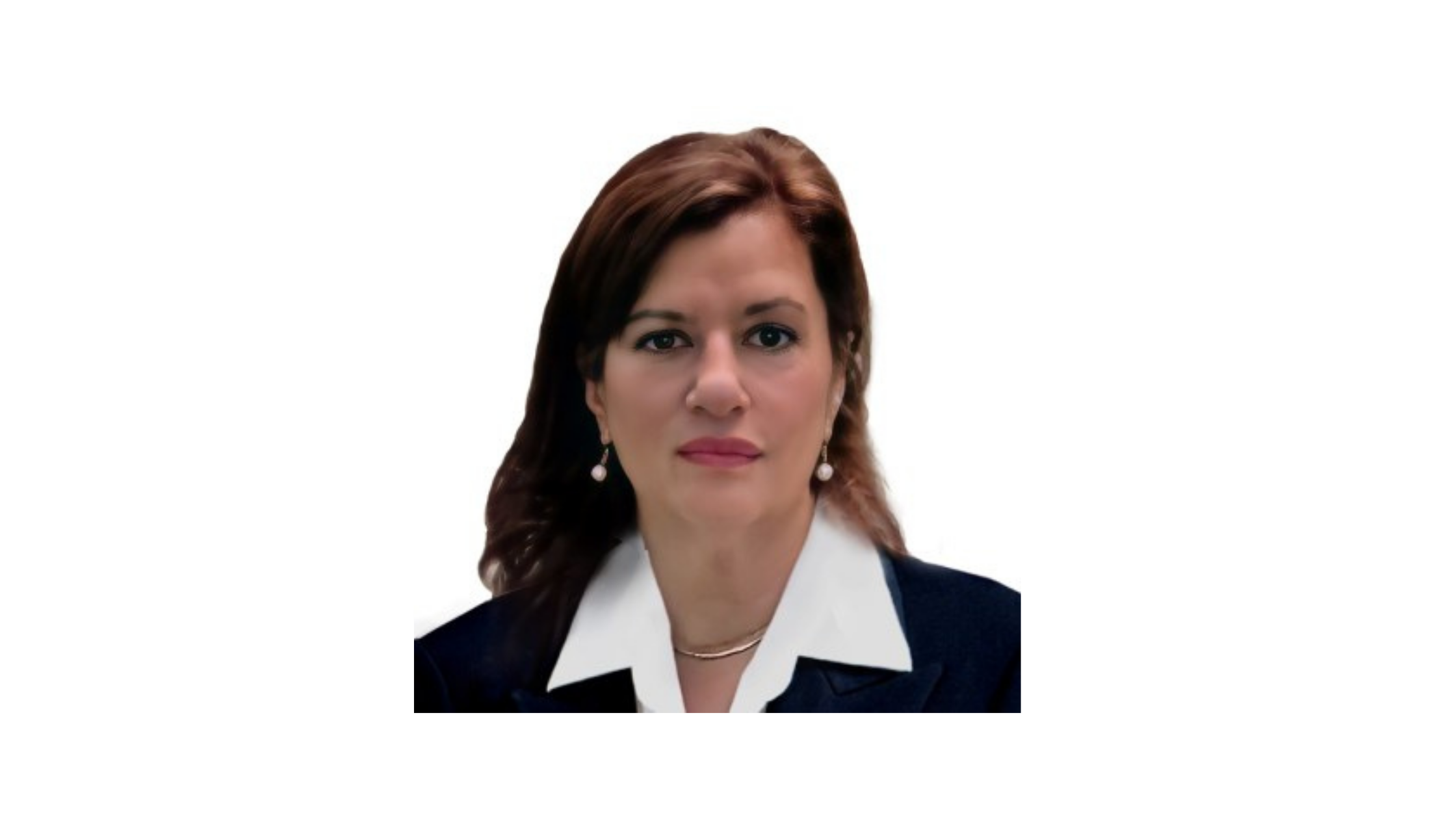 Dena Falken Ceo and Founder of Legal-Ease International trains Foreign Legal Professionals to talk the Legal Talk